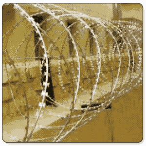 Concertina Wire In Tonk